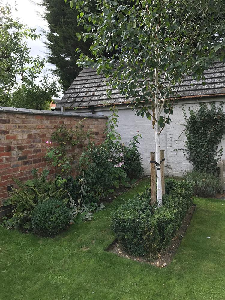 Full Garden Design Back New Trees And Border