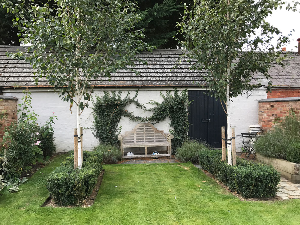 Full Garden Design Back With New Trees And Hedging