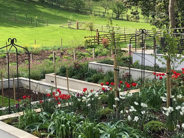 Multi-level-garden-spring-2019-23