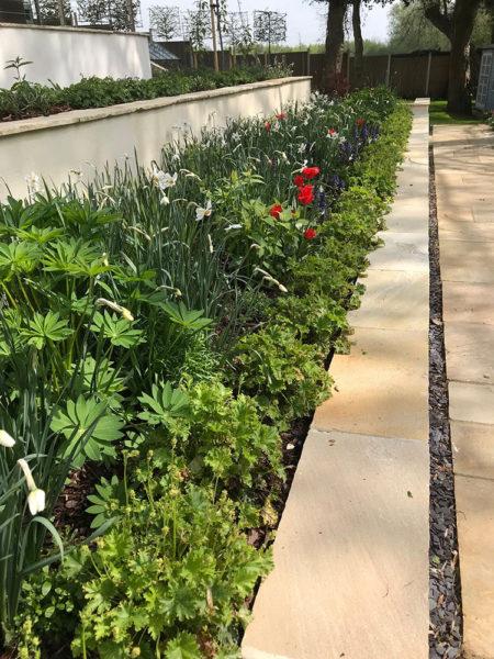 Multi-level-garden-spring-2019-26