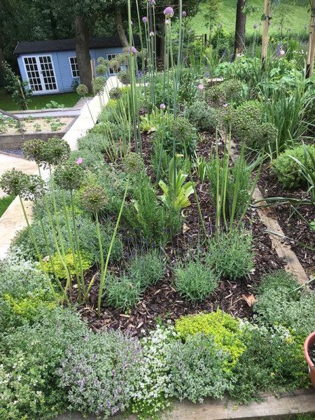 Multi-level-garden-spring-2019-27
