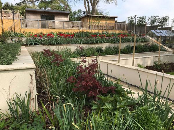 Multi-level-garden-spring-2019-32
