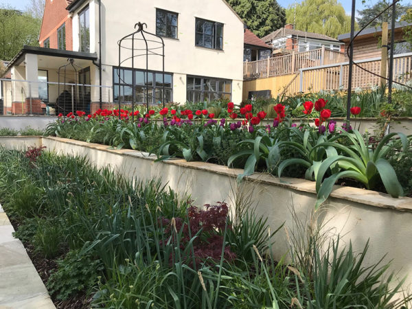 Multi-level-garden-spring-2019-36