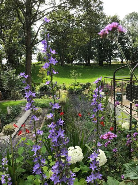 Multi-level-garden-spring-2019-37