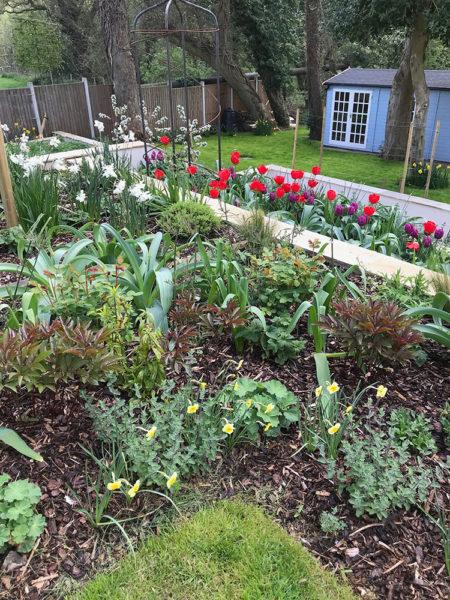 Multi-level-garden-spring-2019-6