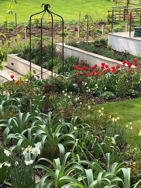 Multi-level-garden-spring-2019-7