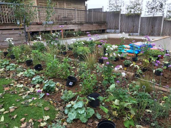 garden-landscape-multi-level-1