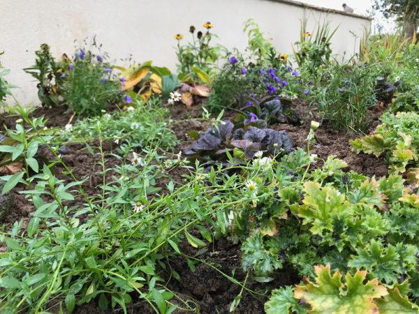garden-landscape-multi-level-17