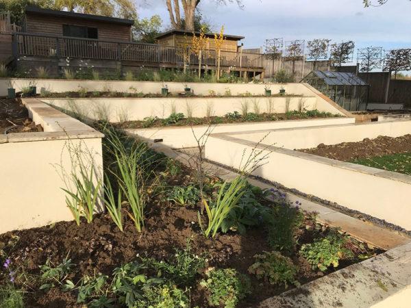 garden-landscape-multi-level-18