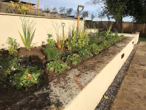 garden-landscape-multi-level-7
