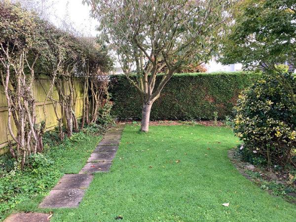childrens-activity-garden-before-3