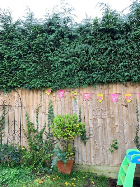 childrens-activity-garden-before-5