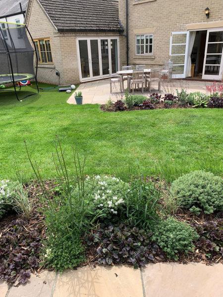 small-garden-development-4