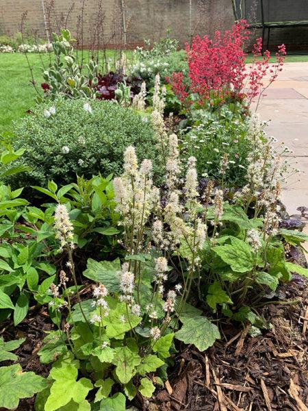 small-garden-development-5
